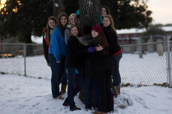 CR13GirlsonTree